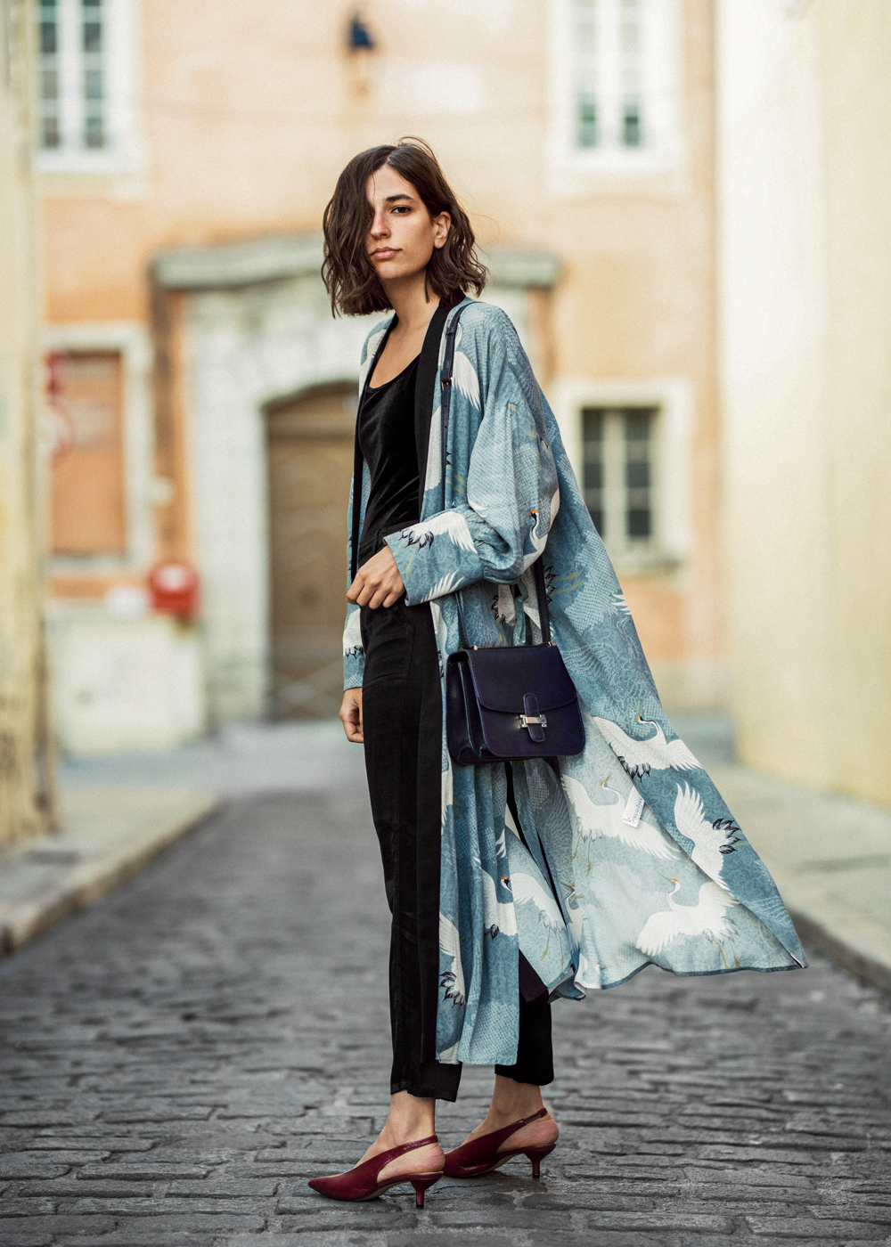 26b8c1de dress-kimono-inspired-robe-heron-printed-zara -new-collection-aria-di-bari-kitten-heels-silk-pants-velvet-bodysuit-french-blogger